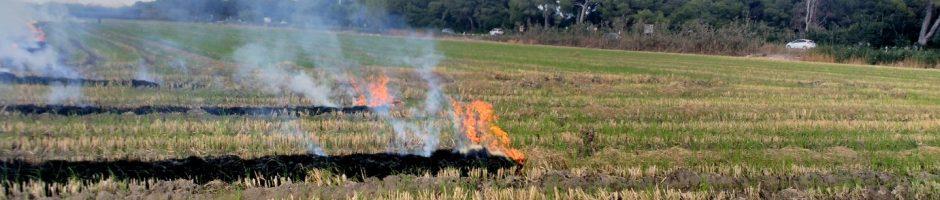 Permisos y control de quemas